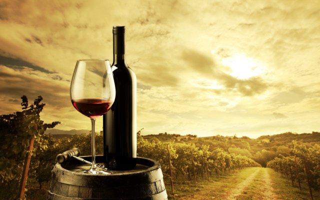 Winedipity Experience