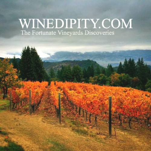 Winedipity is all about fortunate discoveries of wines and vineyards.